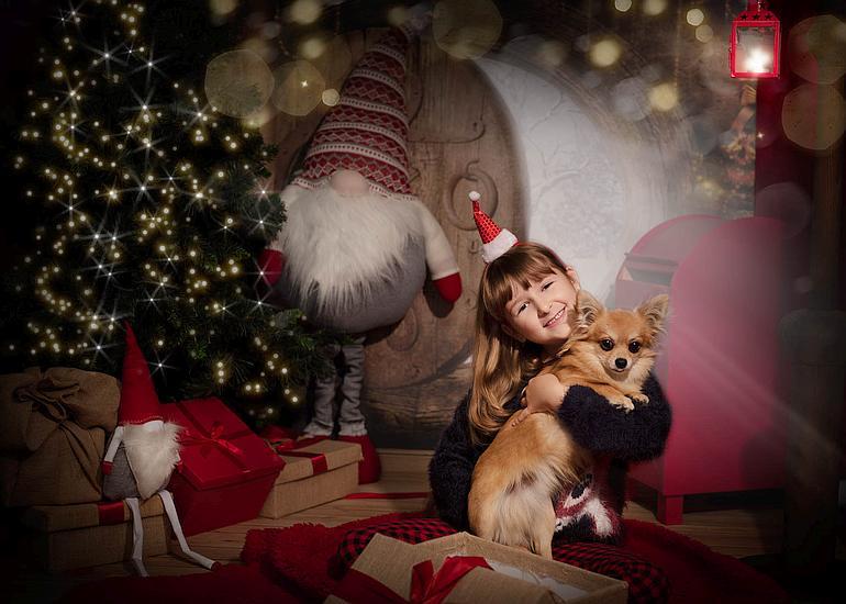 mini sesje świąteczne poznań